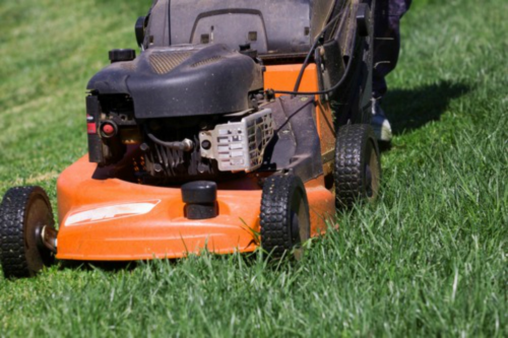 lawnmower-lawn-mower-green-grass-orange-black