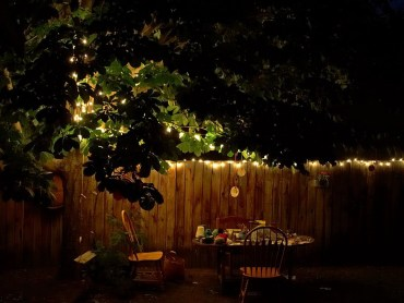 garden-setting-at-night-pdphotos-