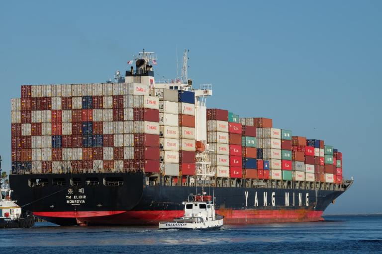 A large ocean-going vessel named the Yang Ming Elixir shipping many containers.