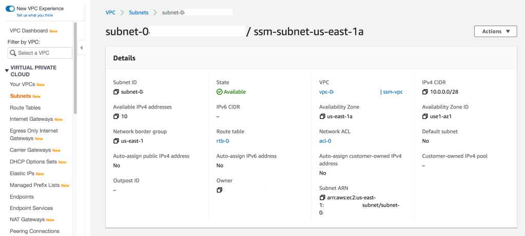 Example details for an AWS VPC Subnet configuration with many settings.