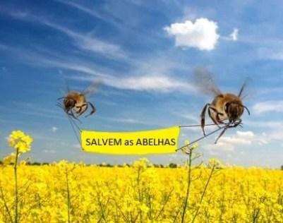 salvar-abelhas.02