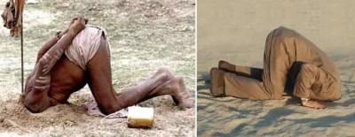 homem-avestruz-massa-ignorante