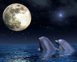 lua-oceano-golfinhos
