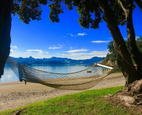 Top Things To Do In New Zealand Summer Holiday