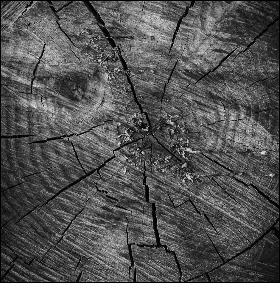 log abstract 2