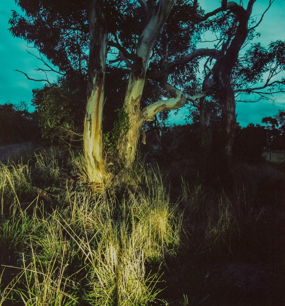twilight, Waitpinga