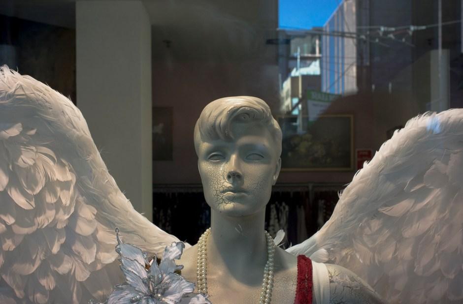 angel, Wellington, NZ