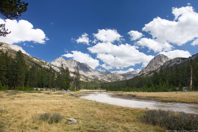 McClure Meadow - Evolution Valley