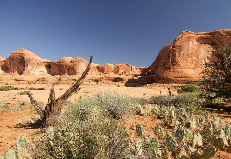 An arch across the canyon