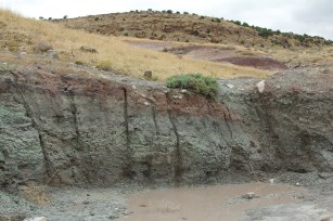 Green soil deposit typically found in the Morrison Formation