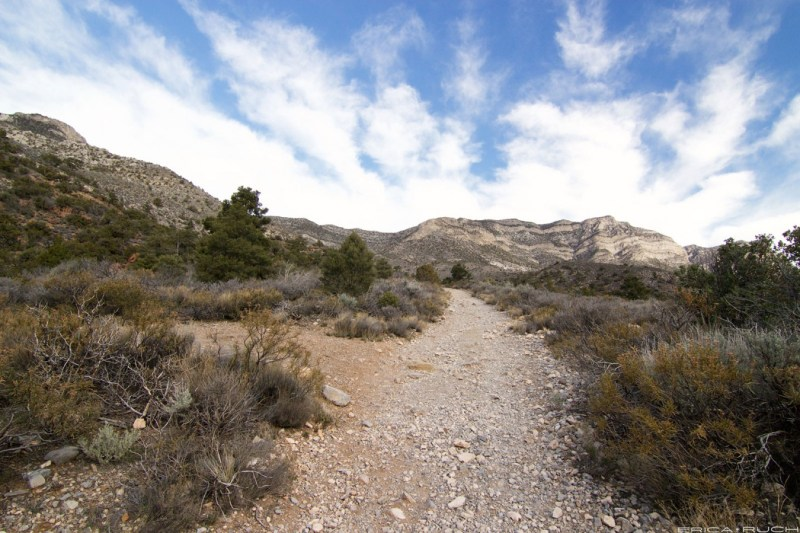 La Madre Springs Trail