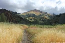 Grass Mountain Trail