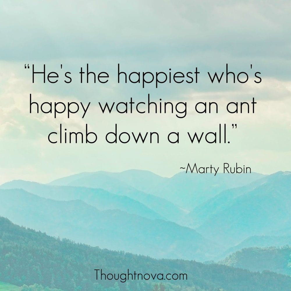 quotes about happiness to radiate positivity into your life