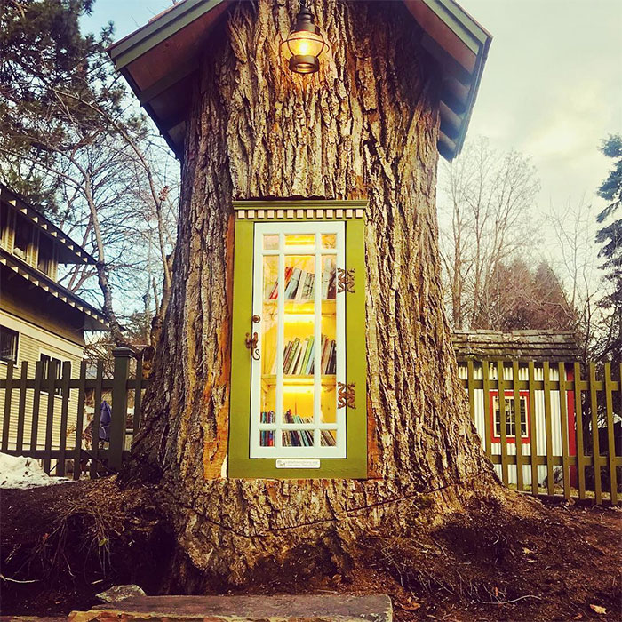 Woman Turned 110-Year-Old Dead Tree Into A Free Little Library For The Neighborhood And It Looks Magical