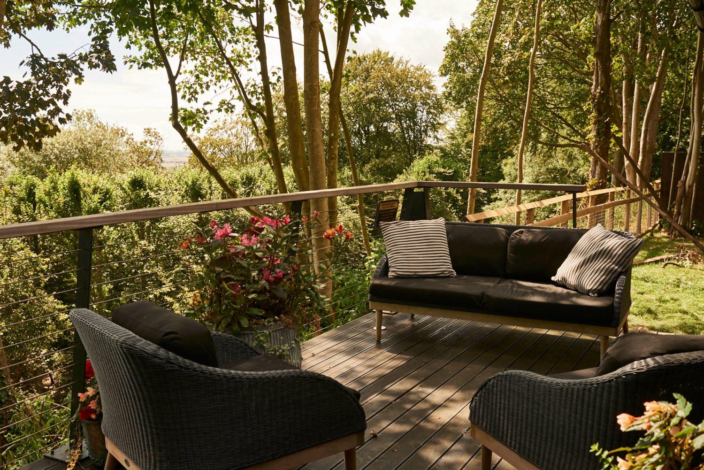this incredible safari lodge lets you sleep next to lions and tigers