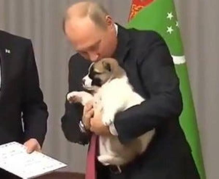 the president of turkmenistan is such a bastard that vladimir putin had to intervene