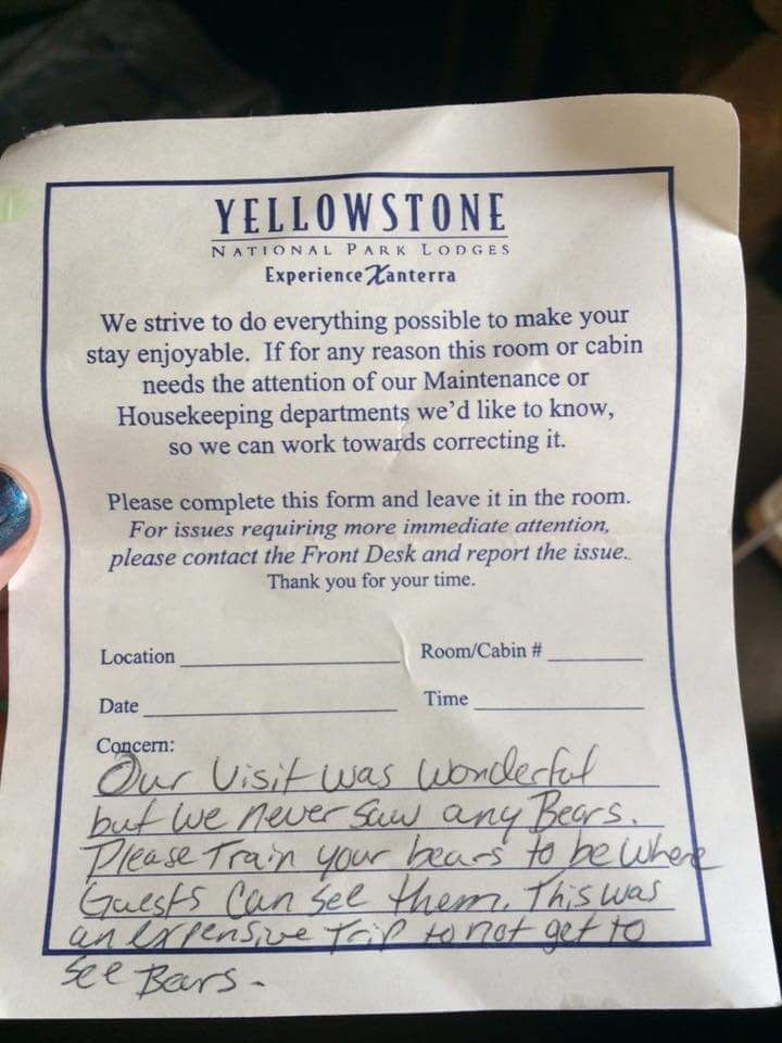 """yellowstone tourist files complaint about """"untrained"""" grizzly bears"""