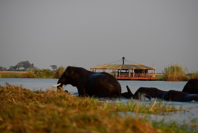 this floating restaurant straddles the borders of 4 african countries — and you can see elephants and hippos while you eat (video)