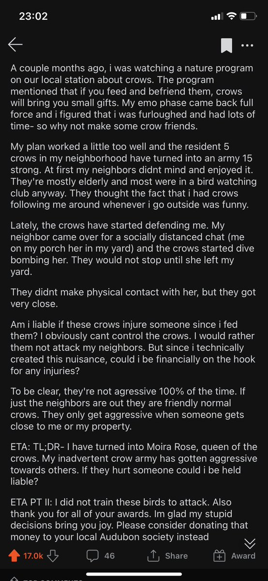 woman accidentally creates crow army that ends up saving neighbor's life