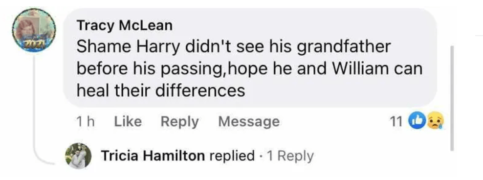 everyone's saying the same thing about harry and william after they reunite at prince philip's funeral