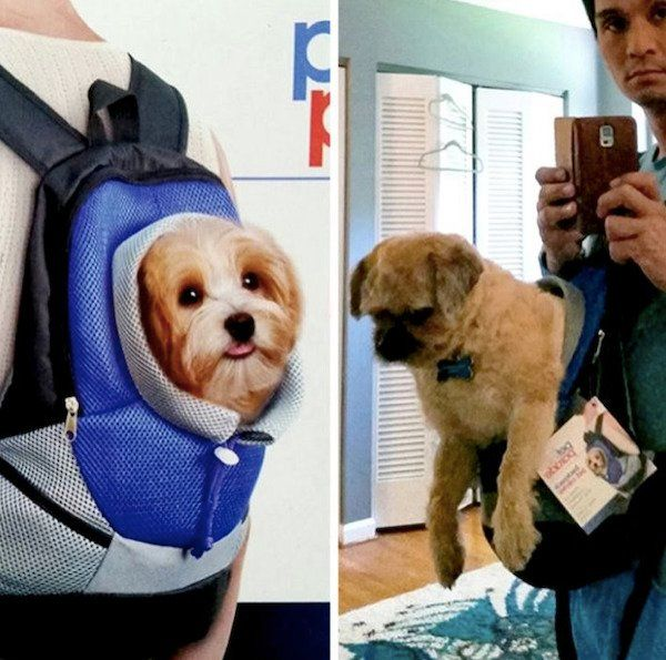 29 Hilarious Pictures That Show Expectations Can Never Be A Reality