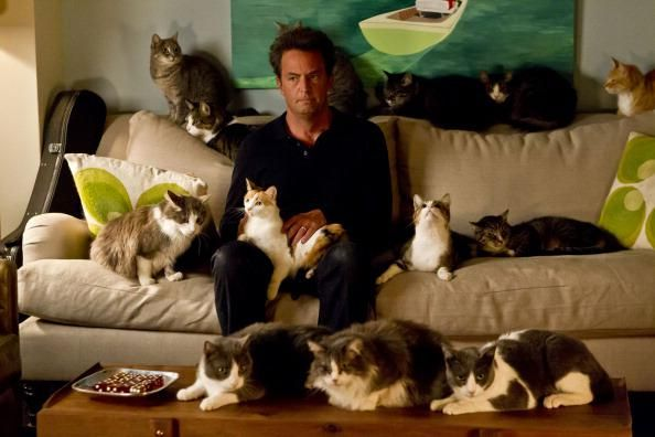 latest picture of matthew perry after recent devastation is turning heads