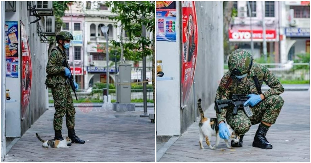 Malaysian Cop Can't Fight The Urge To Pet Street Cat