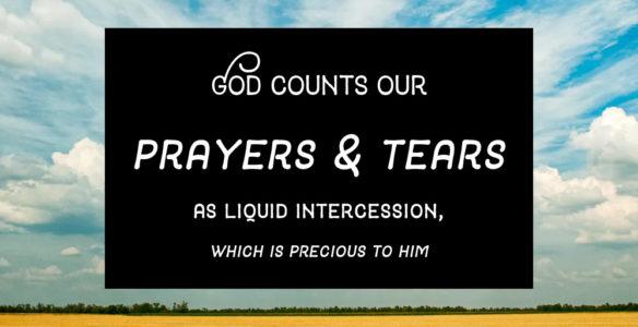 Comfort: God's Holy Exchange