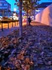 Crunchy Leaves - Liechtenstein
