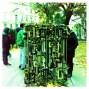 The Lovelock Tree - Budapest