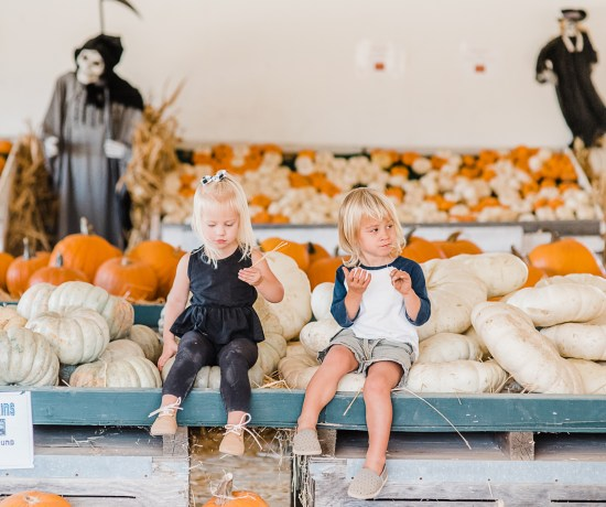 A trip to the pumpkin patch with twins   San Diego Mom Blogger