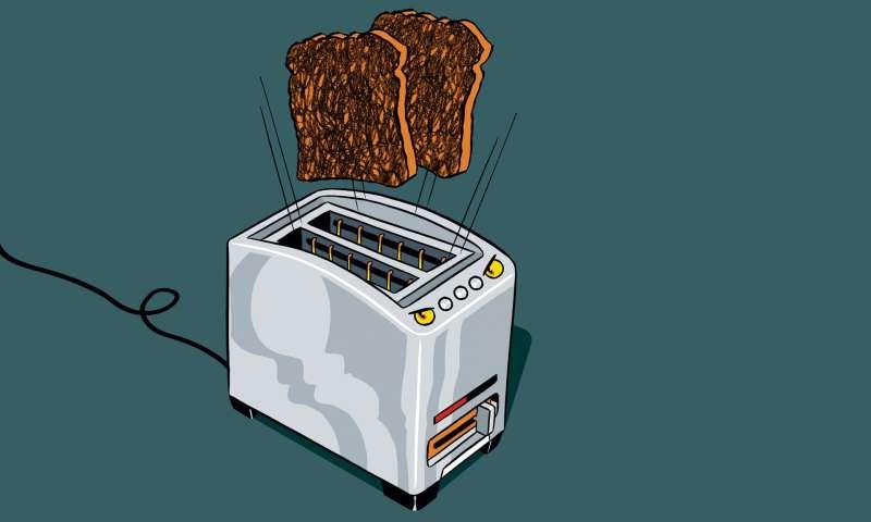Internet-enabled toaster