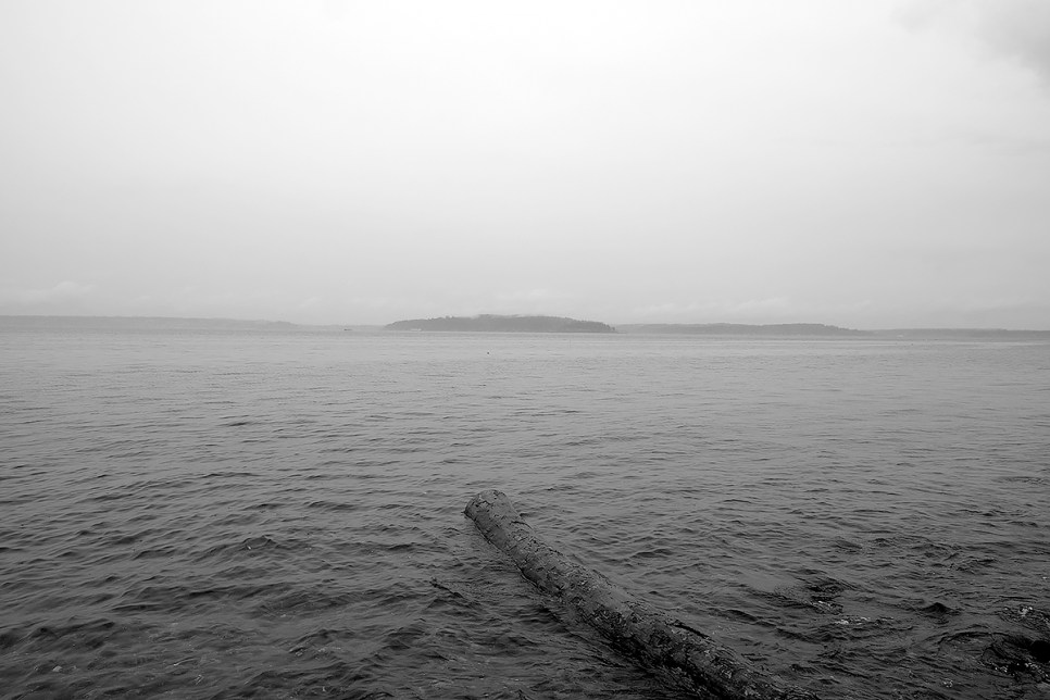 Looking through the rain, out at the Islands. Emma Schmitz Memorial Outlook.