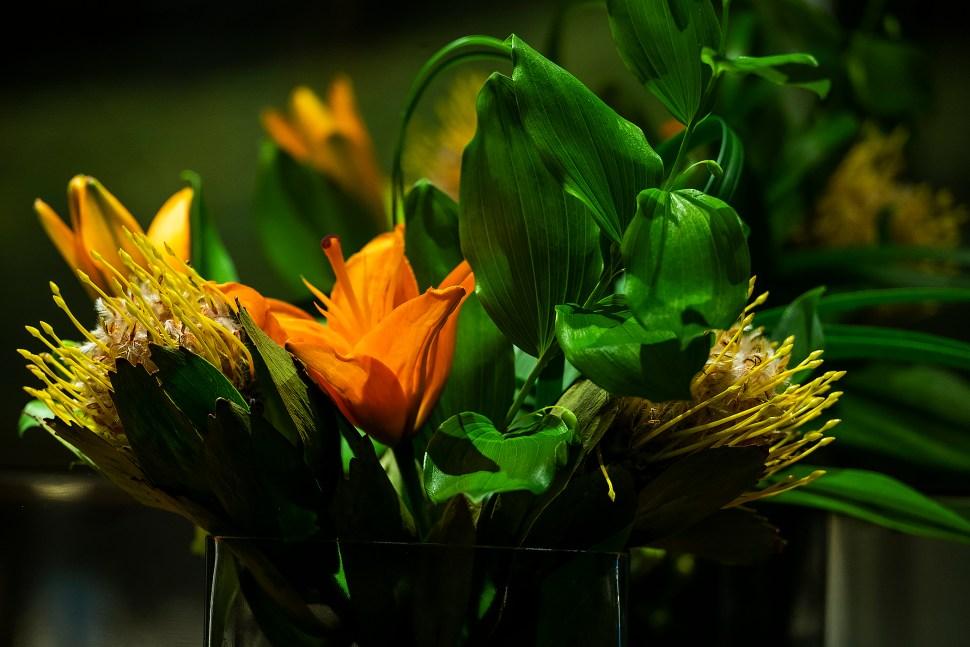 flowers_DSF4754.jpg