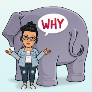 cartoon of keerthi asking why