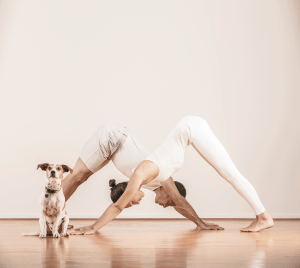 Sommer and Paul in Downward Dog
