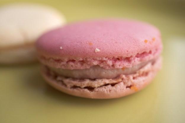 pink macaroon