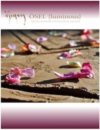 OSEL Magazine 2015 issue - Luminous