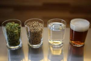 Home brewing ingredients