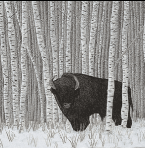 Quilts of Canada Manitoba Bison thumbnail
