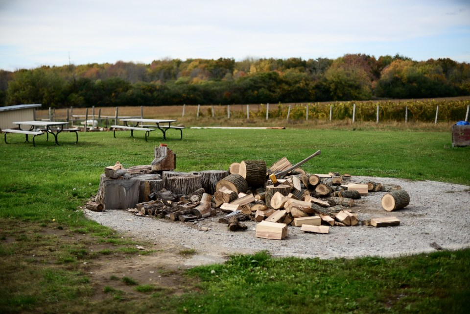 Prince Edward County Wineries - Hinterland