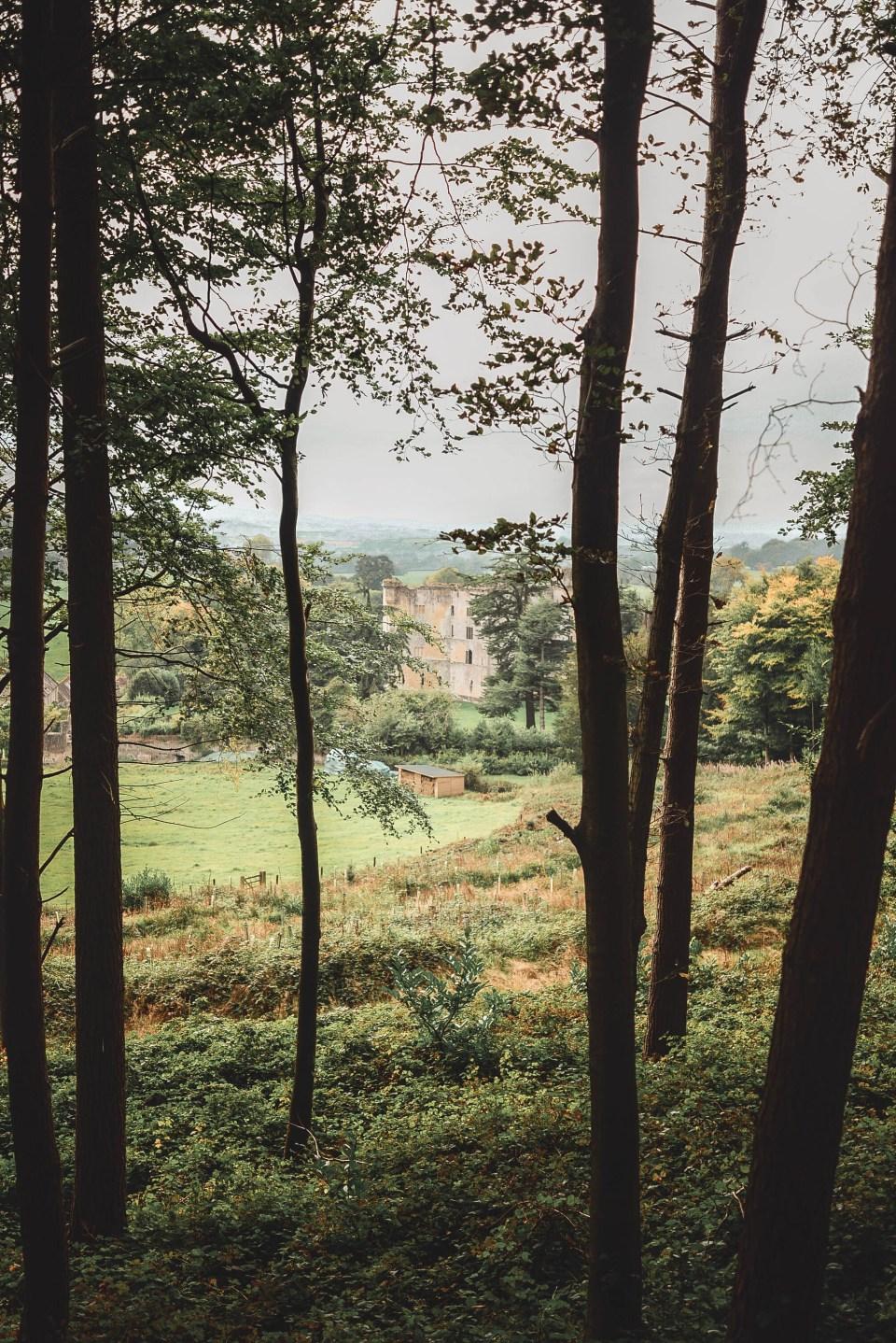 View to Old Wardour Castle