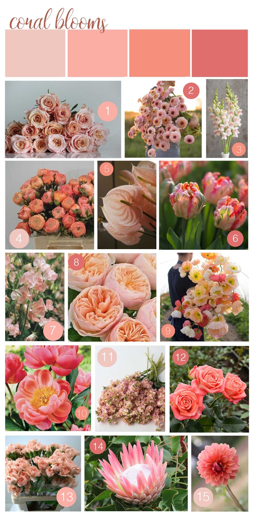 Coral Flowers - 2019 Pantone Color of the Year - Coral Wedding Inspiration