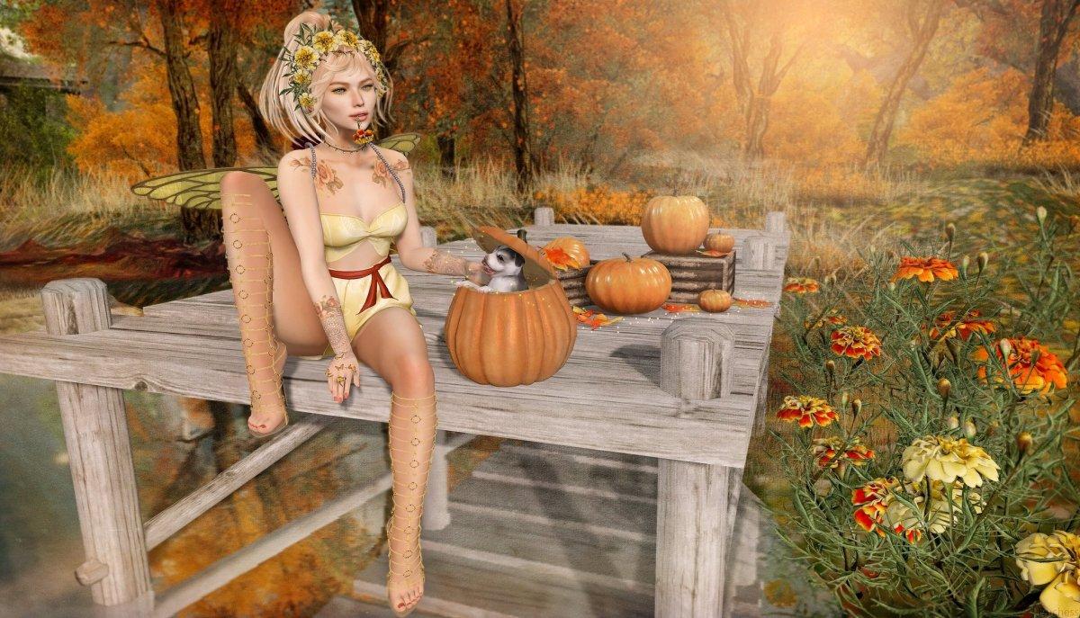 Marigold Pumpkins