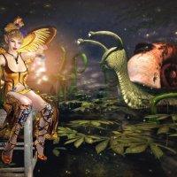 Gwendolyn's Fireflies