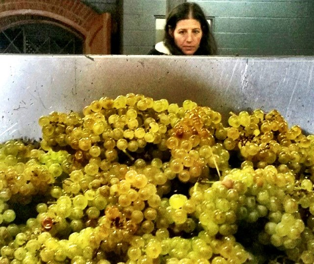 kristen with grapes image