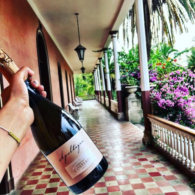 threadsandvino_sparkling_wine_from_chile