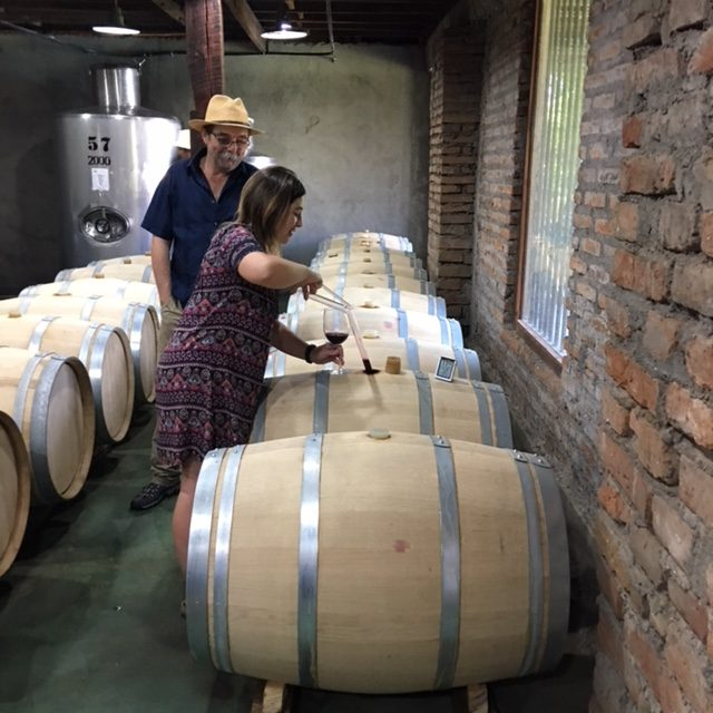 Barrel Room Sampling_Curico Chile_Chilean Wine Adventure_ThreadsandVino