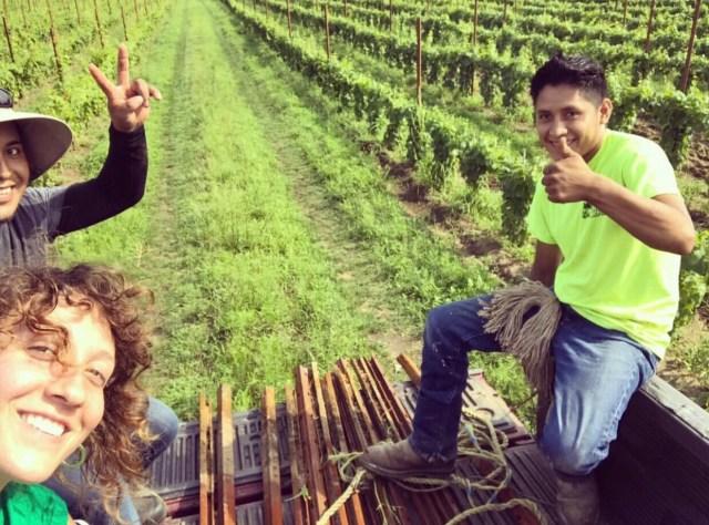 threadsandvino_winemaker interview_christiana mcdougal_black birch vineyards_winemaker_winemaking_women winemaker