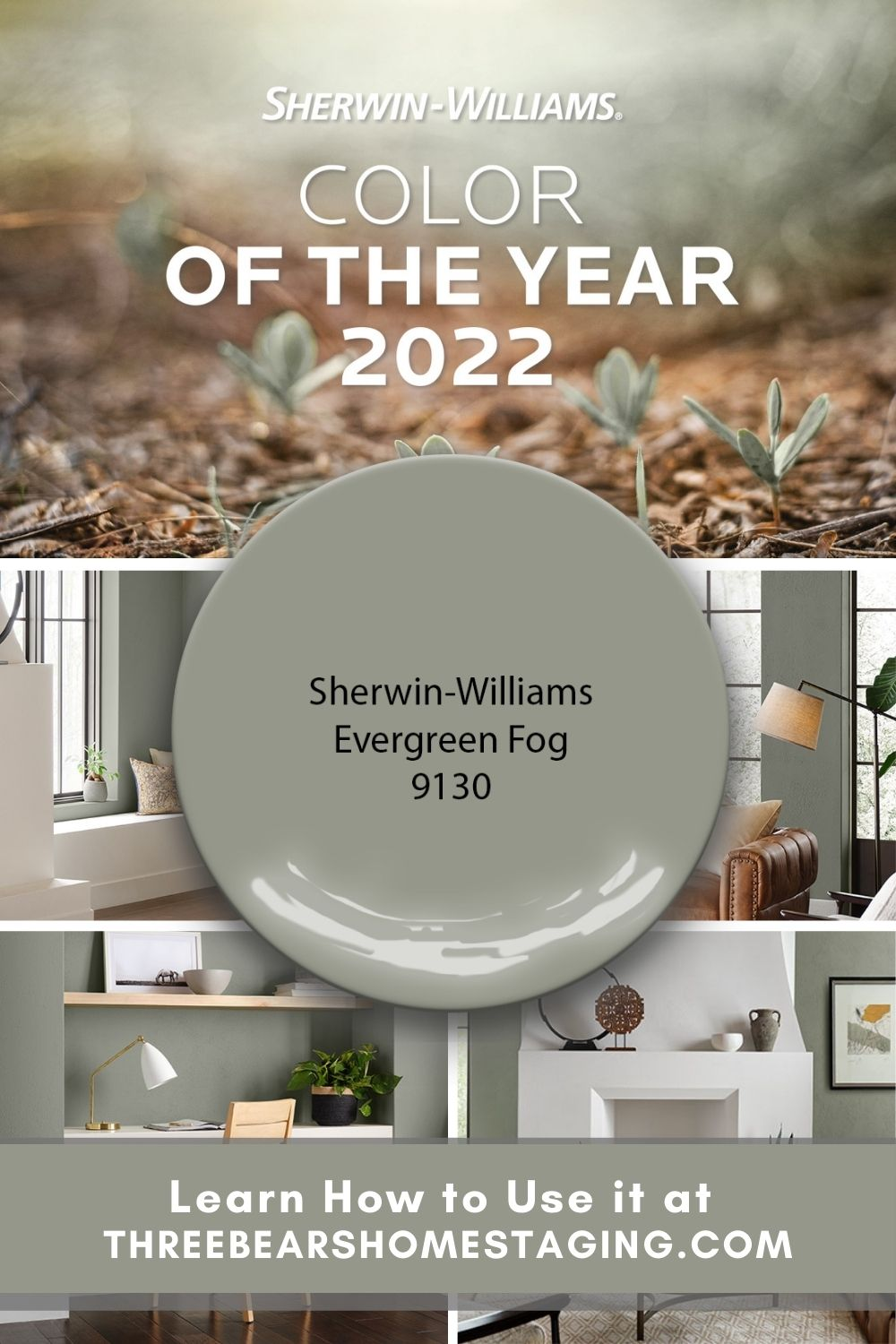 2022 Color of the Year Evergreen Fog